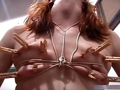 Bound Innocent Virgin 3 (2013)