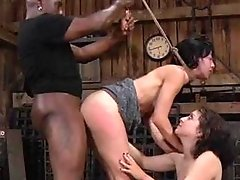 Elise Graves and Dixon Mason - Double Blind Study, Part 3 (2013) SiteRip