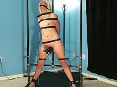 Adeline Rose Predicament Orgasms